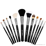 12 professional quality brushes
